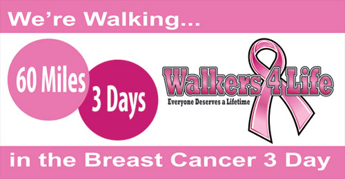 Donate To The Breast Cancer 3-Day (Click on Image)